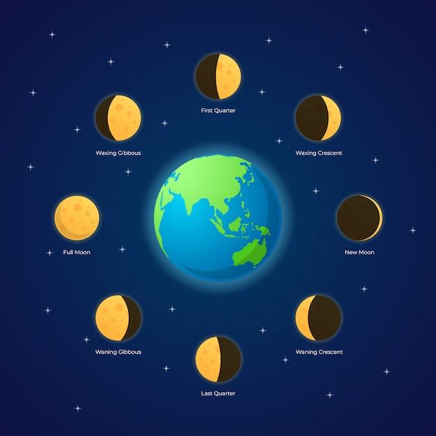 月の満ち欠けの図 Premiumベクター