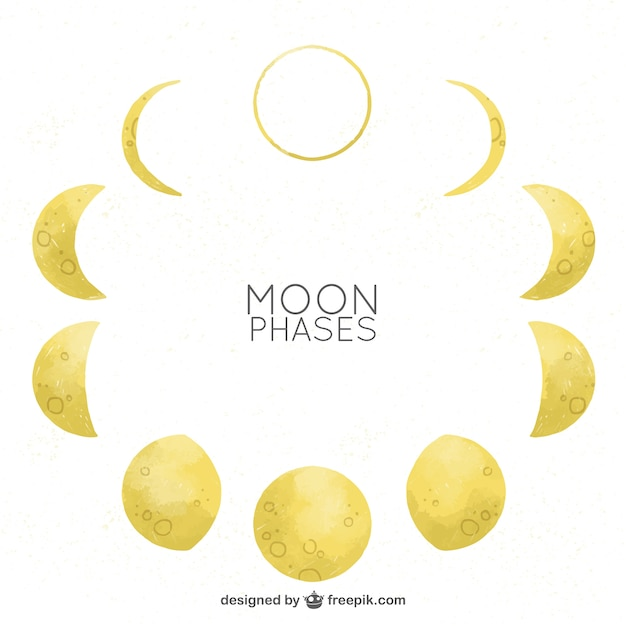 Moon phases in watercolor effect vector | free download.