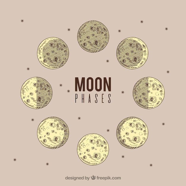 Moon phases in vintage design Free Vector