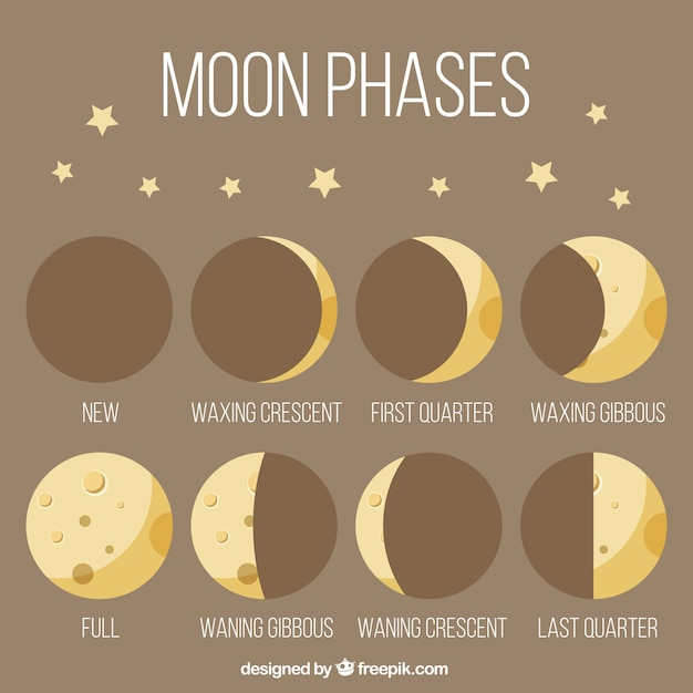 Moon phases in vintage style Free Vector