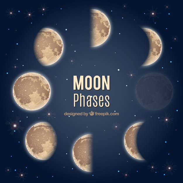 Moon phases Free Vector