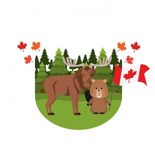 カナダのムースとビーバー動物 無料ベクター