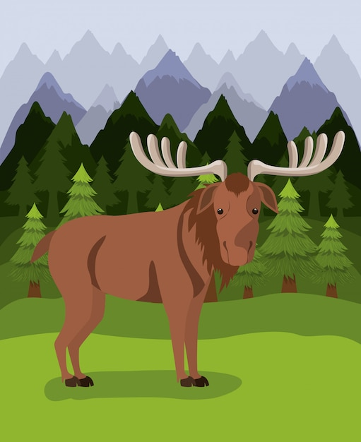 Moose animal and pine trees Free Vector