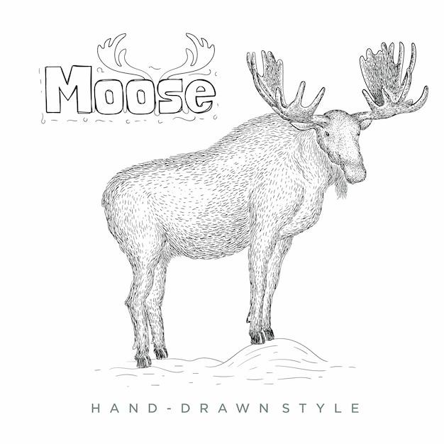 ムース手描き動物イラスト Premiumベクター