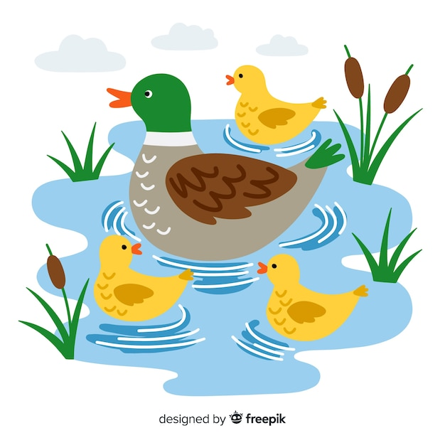 Mother duck and ducklings on flat design Free Vector