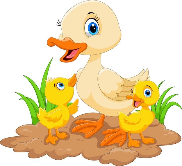 Mother duck and ducklings Premium Vector