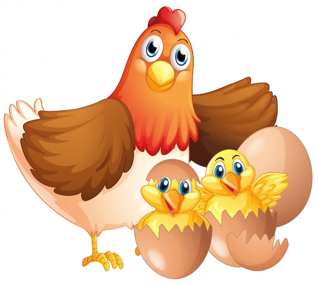 Mother hen and two chicks Free Vector