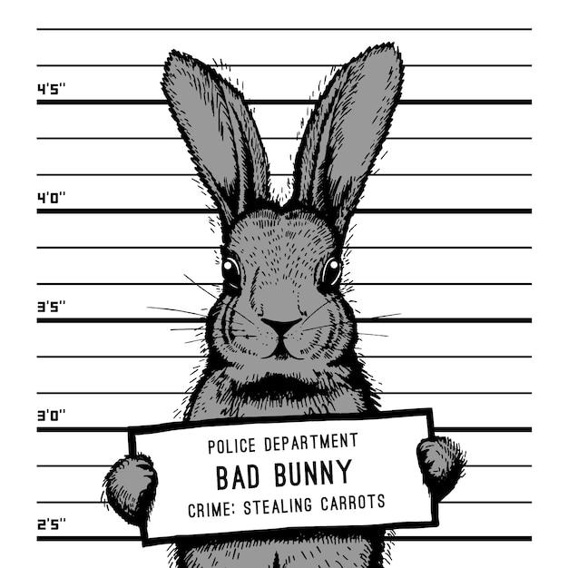 Bad Bunny Images 17 Vectors Photos