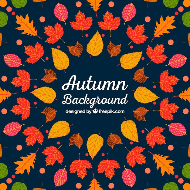 Multicolor autumn background Free Vector