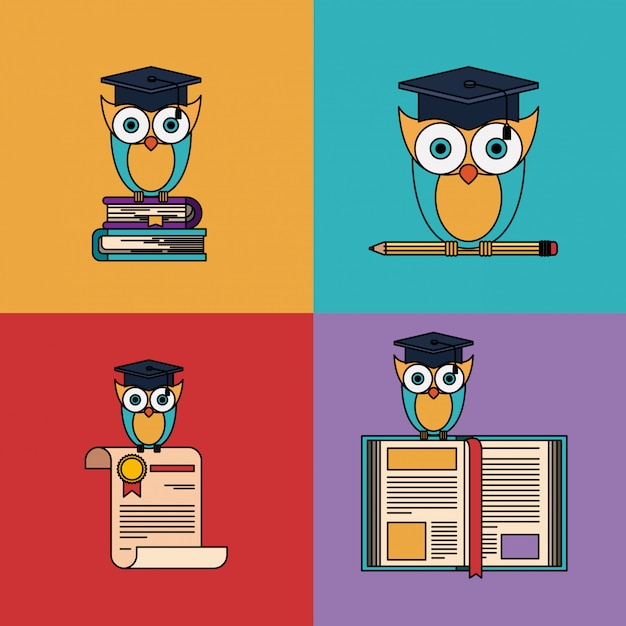 Multicolored set with owl with school and graduation elements Premium Vector