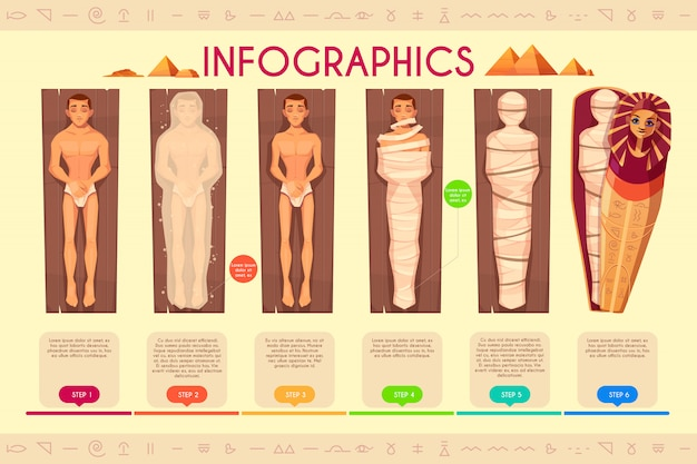 Mummy creation infographics, steps of mummification process, timeline. Free Vector