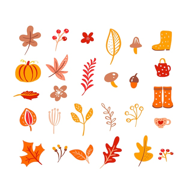 Mushroom, acorn, maple leaves and pumpkin isolated on white Premium Vector