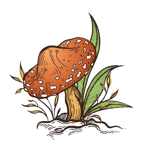 Mushroom. Premium Vector