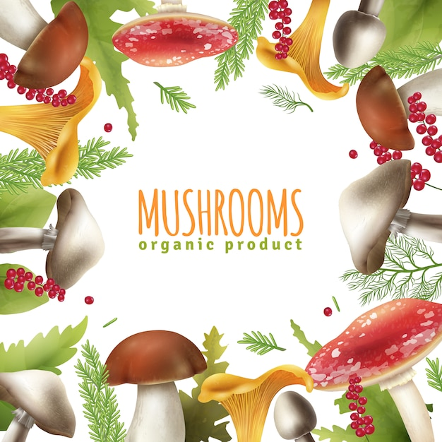 Mushrooms frame realistic background poster Free Vector