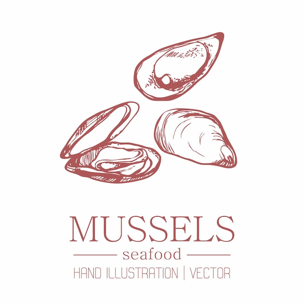 Mussels. vintage style. hand drawing. Premium Vector