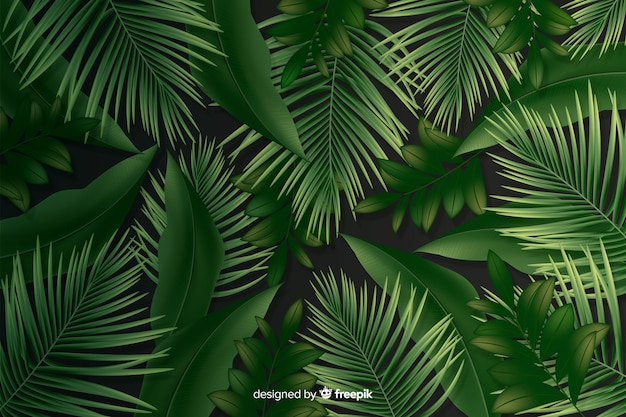 Natural background with realistic leaves Free Vector