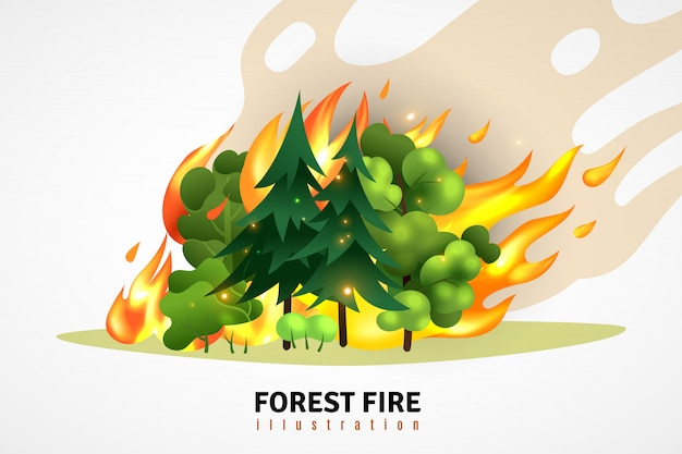 Natural disasters cartoon design concept illustrated green coniferous and deciduous trees in forest on raging fire  illustration Free Vector