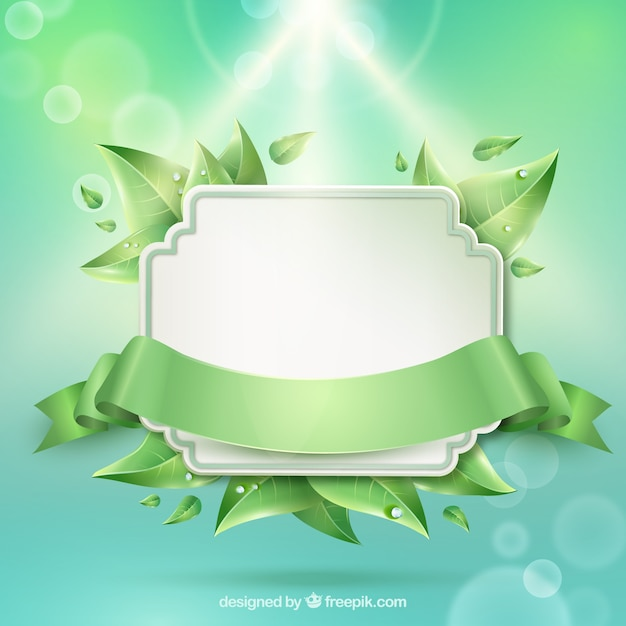 Natural frame Vector | Free Download