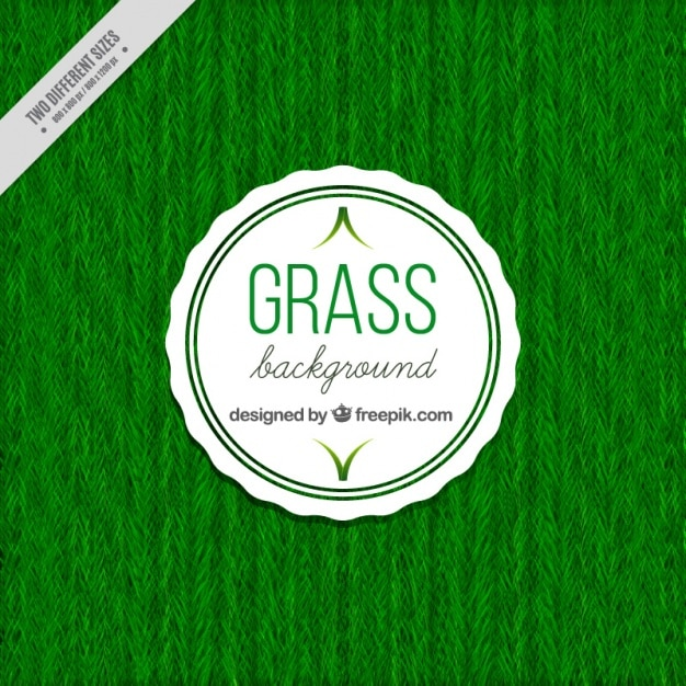 Natural grass background Free Vector