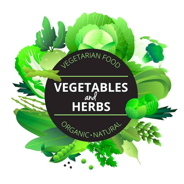 Natural organic vegetables and herbs rounded with cabbage courgette celery and pea green abstract vector illustration Free Vector