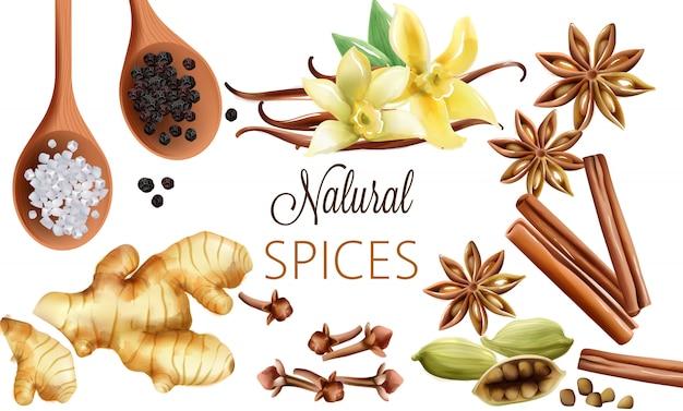 Композиция натуральных специй с солью, черным перцем, имбирем, палочками корицы и ванилью Бесплатные векторы