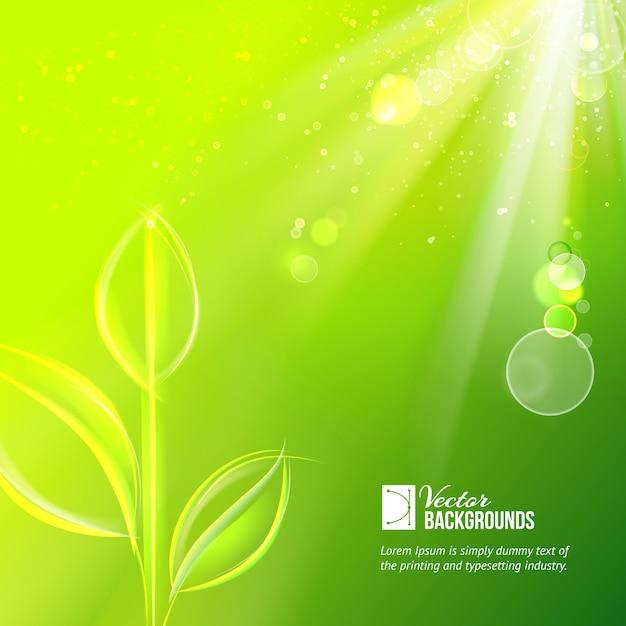 Nature background for summer design.