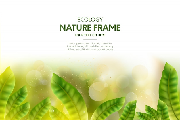 free vector nature frame background with realistic leaves free vector nature frame background
