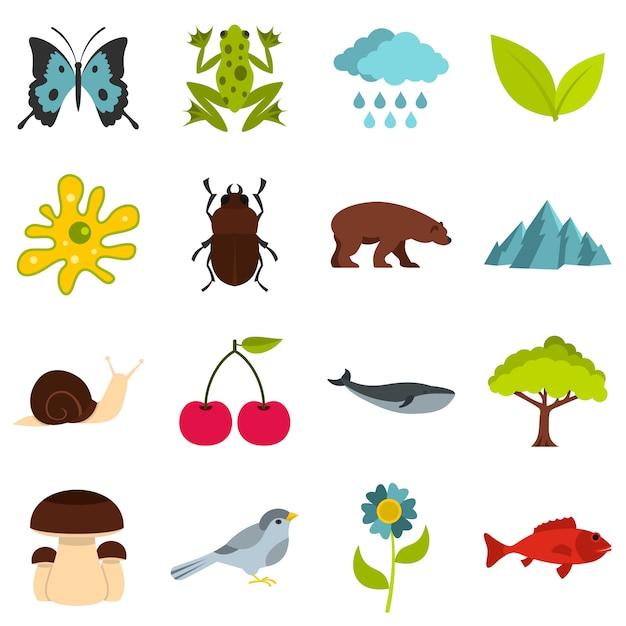 Nature items set flat icons Premium Vector