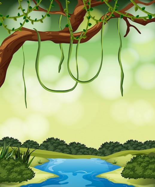 A nature jungle landscape Free Vector