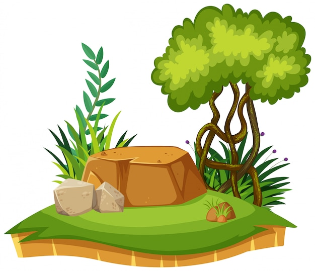 Nature landscape of park with green grass Premium Vector