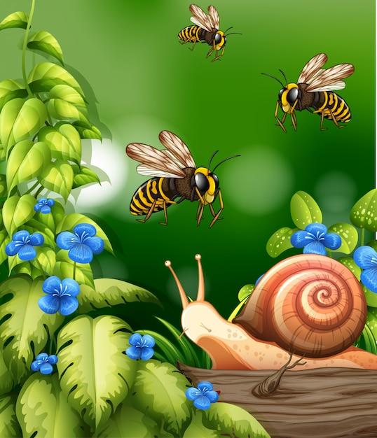 蜂とカタツムリの自然シーン 無料ベクター