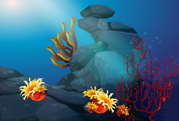 Nature scene with coral reef underwater background Free Vector