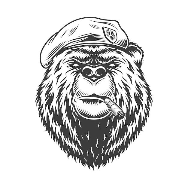 Морской котик с медвежьей головой в берете Бесплатные векторы