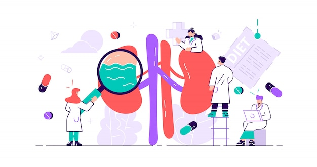 Nephrology concept. abstract anatomical and medical inner organs disease Premium Vector