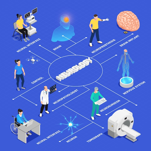 Neurology and neural surgery isometric flowchart with neural research symbols Free Vector
