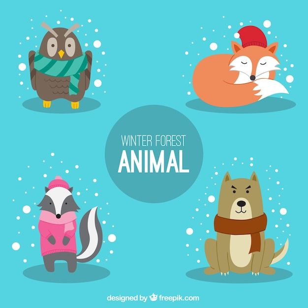 Nice animals with winter accessories