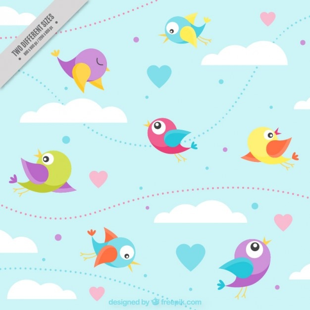 Nice colored birds flying background