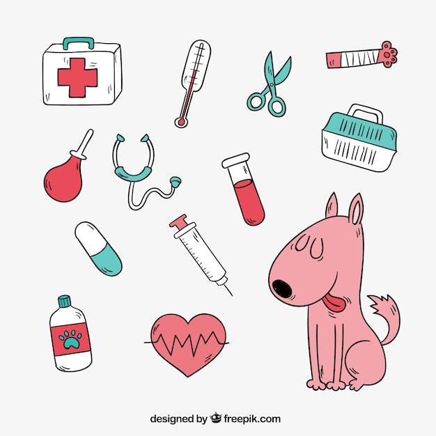 Nice dog with veterinary elements Free Vector