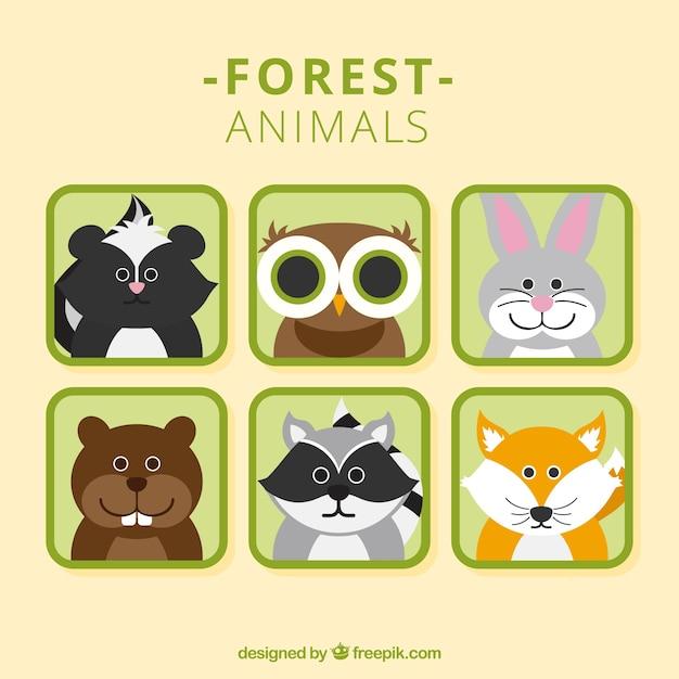 Nice forest animal avatars