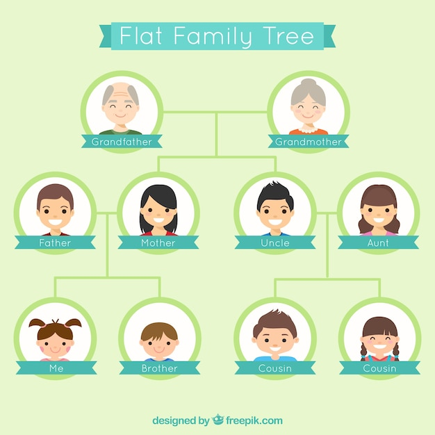 nice genealogical tree in flat design vector free download