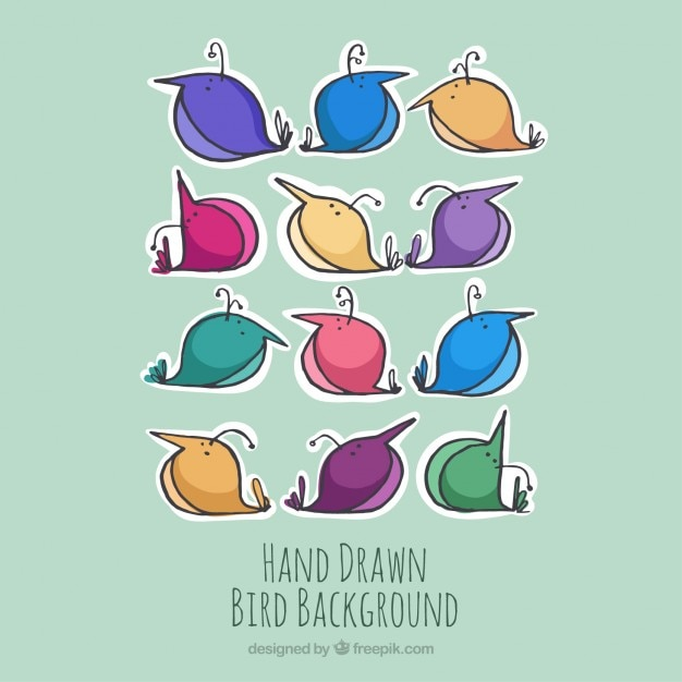 Nice hand drawn colored birds background