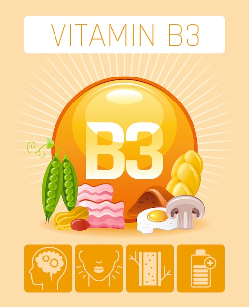 Nicotinic acid vitamin b3 rich food icons with human benefit. healthy eating flat icon set. diet infographic chart poster with bacon, peas, liver, bread. Premium Vector