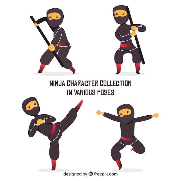 Ninja warrior character collection