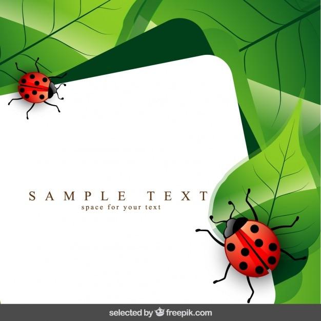 てんとう虫や葉を持つテンプレート ベクター画像 無料ダウンロード