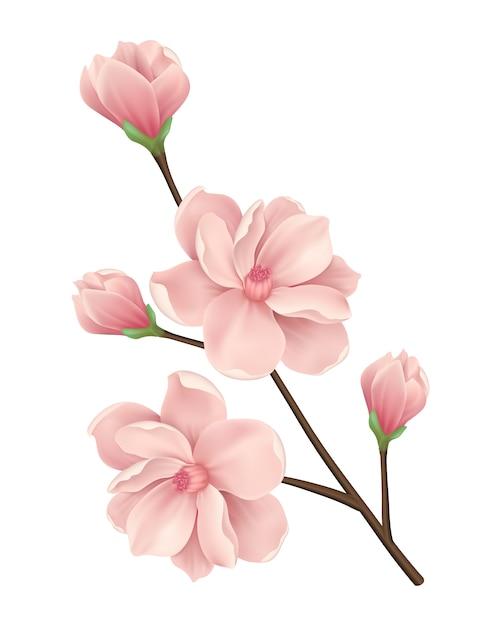 花の背景のデザイン 無料ベクター
