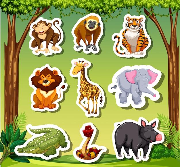 ジャングルのバックグラウンドで多くの動物のステッカー Premiumベクター