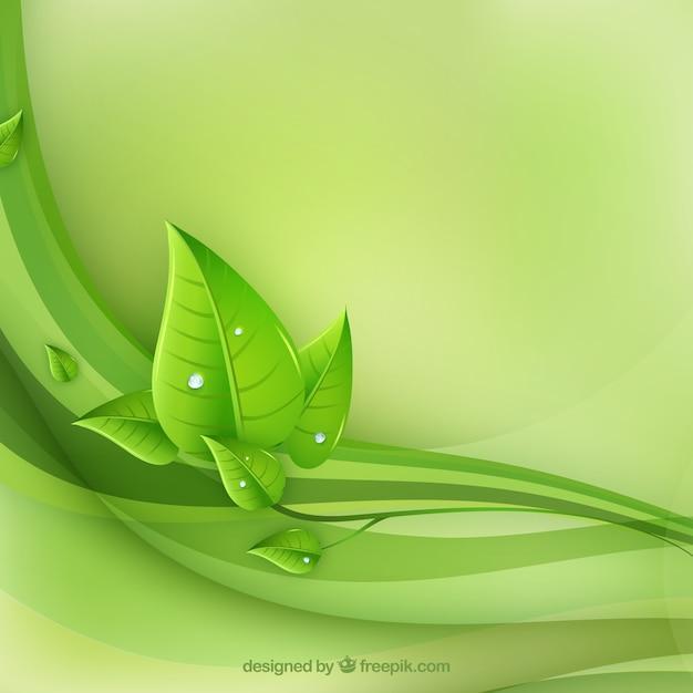 エコ葉と緑の波のベクトル 無料ベクター
