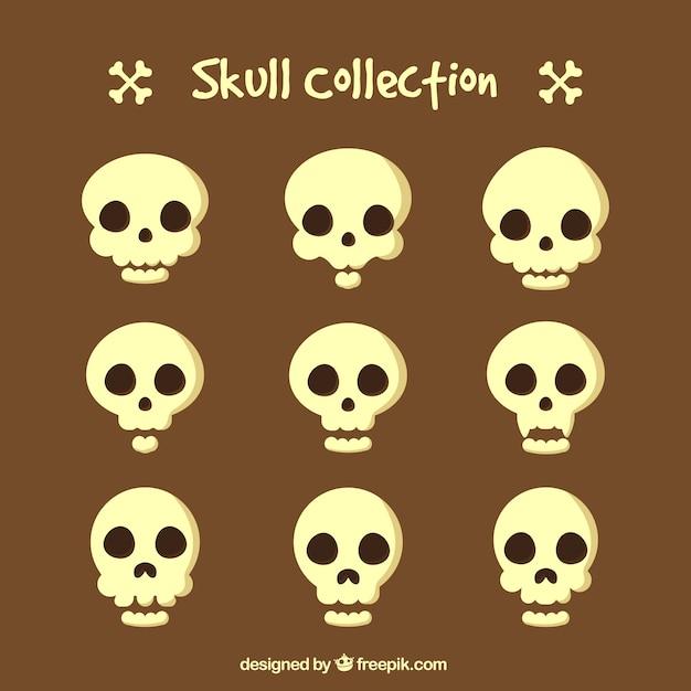 頭蓋骨のコレクション 無料ベクター