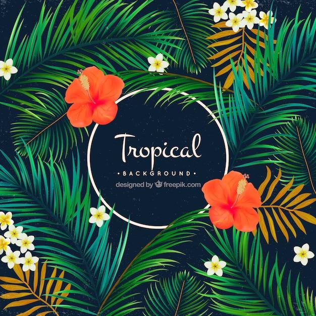 ヤシの木と花の熱帯の背景 無料ベクター