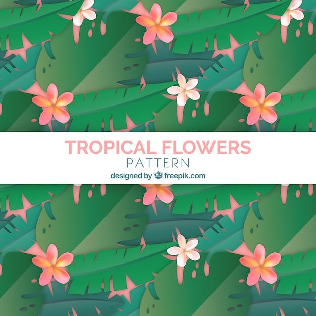 トロピカルな花のパターンの背景 無料ベクター